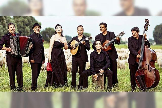 7 Musiker, Klassik Pop und Folklore am 8. Mai im Salmen Offenburg