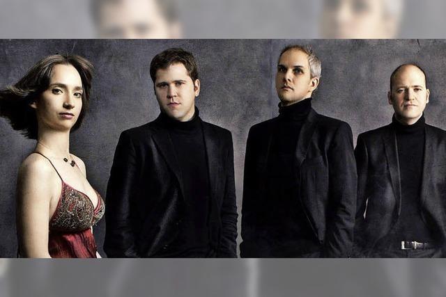 Das Quartett Casals tritt im Schloss Bonndorf auf
