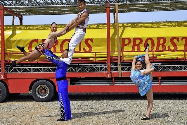 Circus Probst gastiert mit Artisten und Tieren auf dem Messeplatz