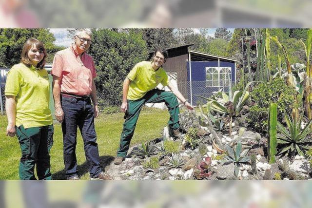 1100 Bäume gepflanzt und 25 Hektar Fläche gepflegt