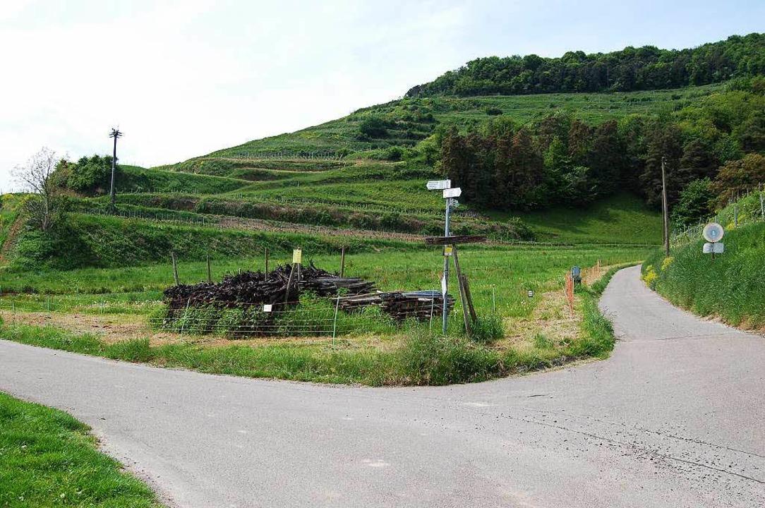 Am Ausgang des Hessentals soll der Neu...bu halten den Standort für ungeeignet.  | Foto: Thomas Rhenisch
