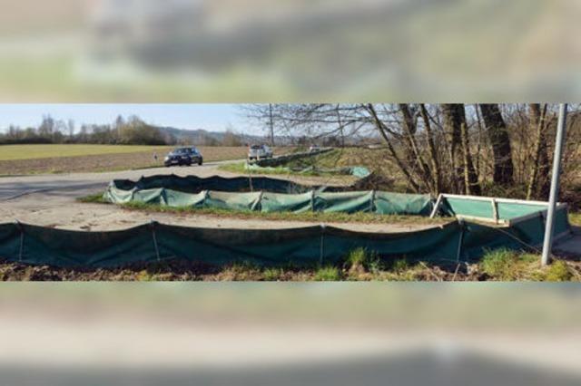 25 000 Frösche und Kröten gerettet