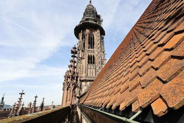 Warum Jugendliche das Münsterdach neu decken mussten