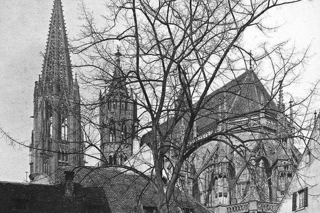 Der Münsterbauverein: Freiburgs erste Bürgerinitiative