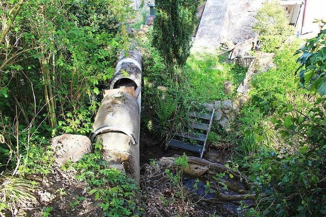 Maroder Mühlenkanal in Sulzburg soll saniert werden