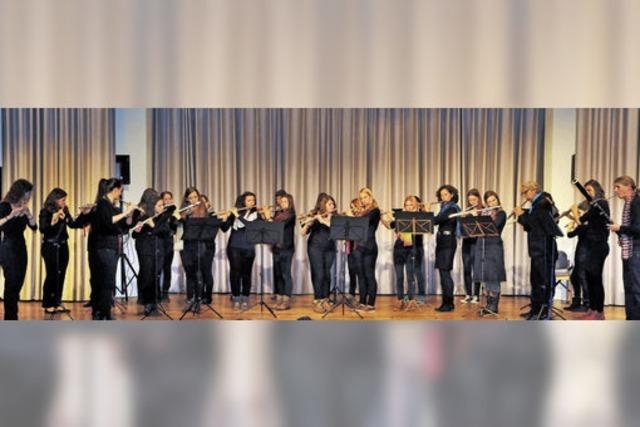 Ensembles der Musikschule Nördlicher Breisgau in Emmendingen