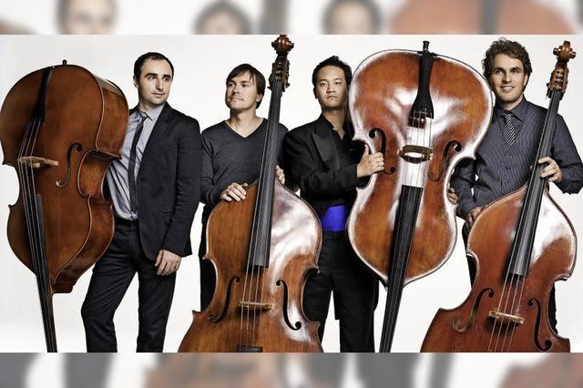 Kontrabass-Ensemble Bassiona Amorosa in Badenweiler