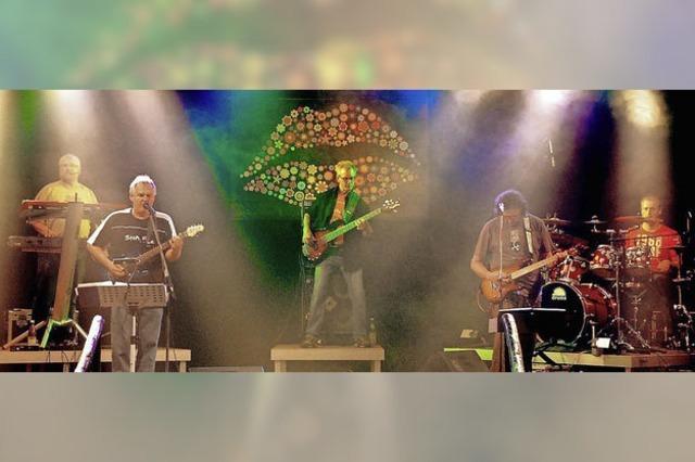 Die Band Stone Free tritt am Birkendorfer Naturena-Badesee auf