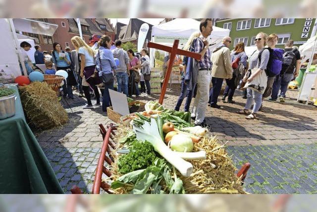 Einblicke in Bio-Landwirtschaft: Öko-Aktionstag auf dem Kartoffelmarkt