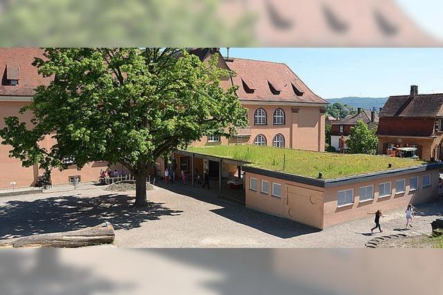 Für 10 000 Festmeter Holzeinschlag eine neue Schule