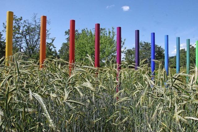 Geplante Einweihung des Kunstweges nach Einspruch durch Naturschützer verschoben