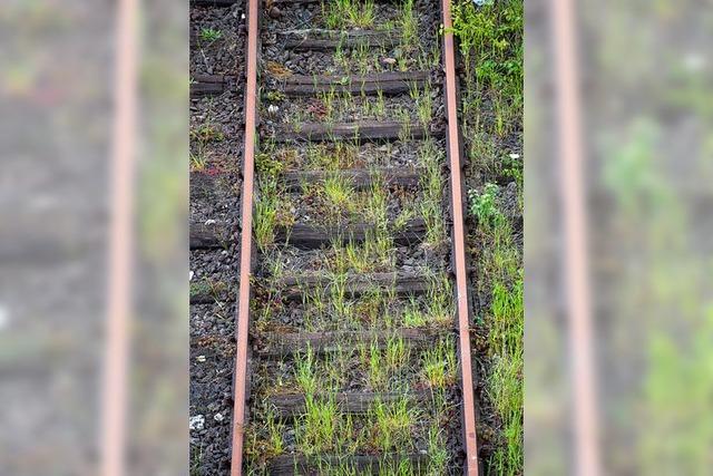 Streik bei Bahn angelaufen