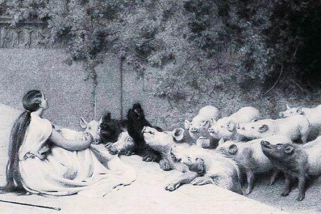 Zwiespältige Kulturgeschichte: Von Schweinen und Menschen