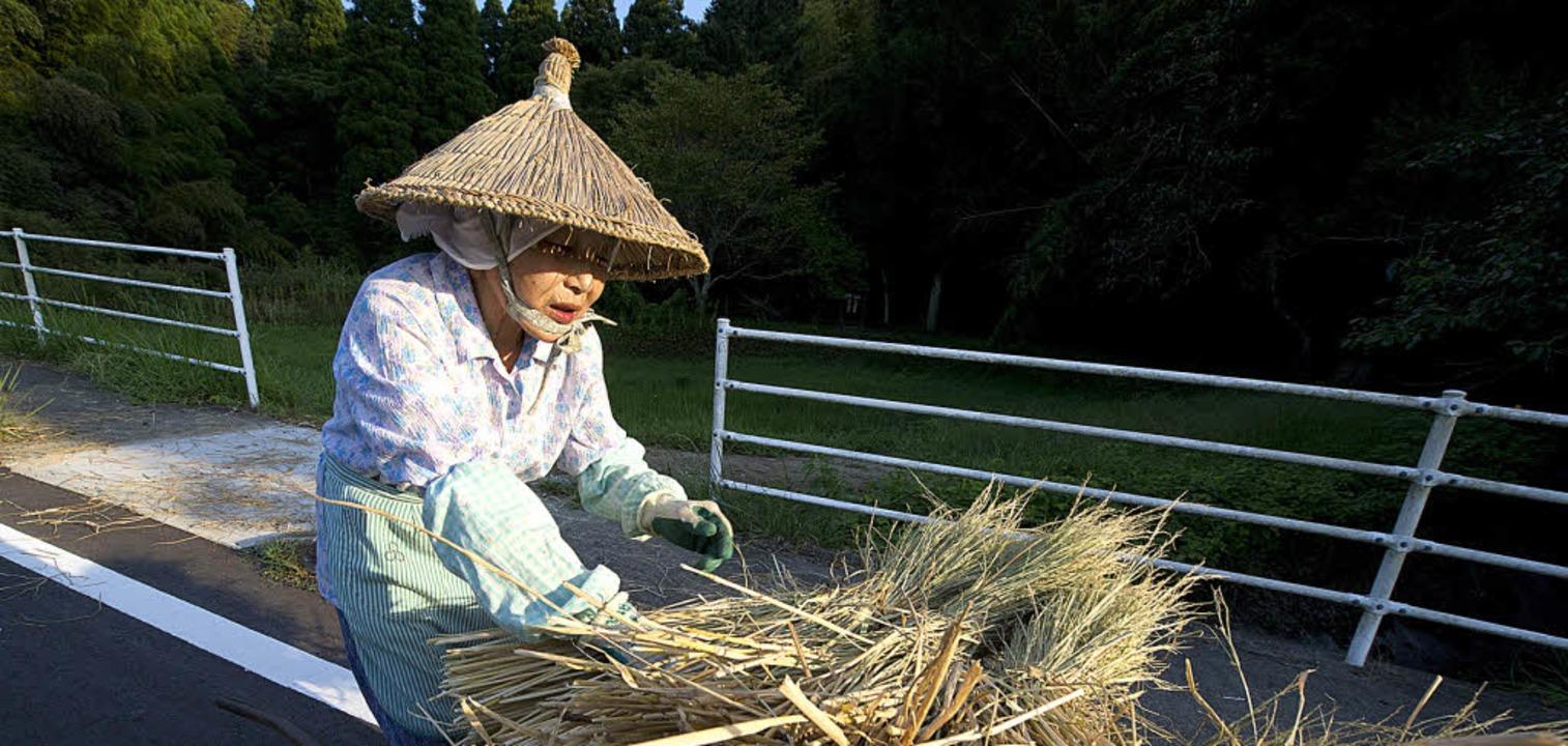Japans bisher mit Zöllen geschützte Re...n ein Freihandelsabkommen mit den USA.  | Foto: dpa