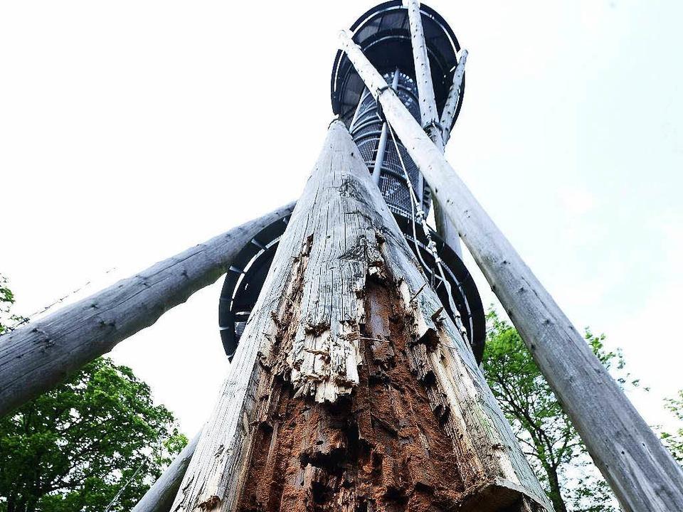 Morsch bis auf den Stahlkern: der Fuß einer Holzstütze   | Foto: Ingo Schneider
