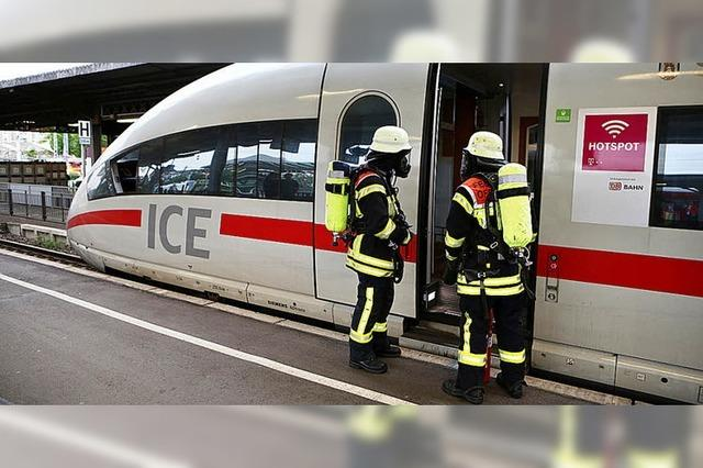 Defekt bremst ICE im Offenburger Bahnhof aus