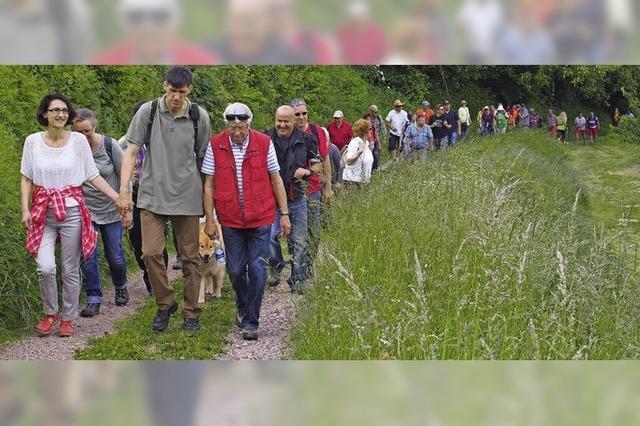260 Wanderer lassen sich verwöhnen