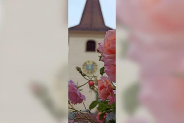 Acht Kirchen auf einen Blick