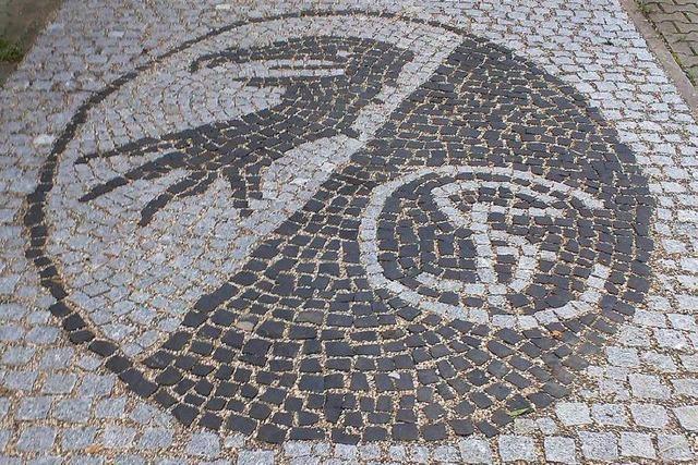 Familie schmückt Einfahrt mit SC Freiburg-Wappen