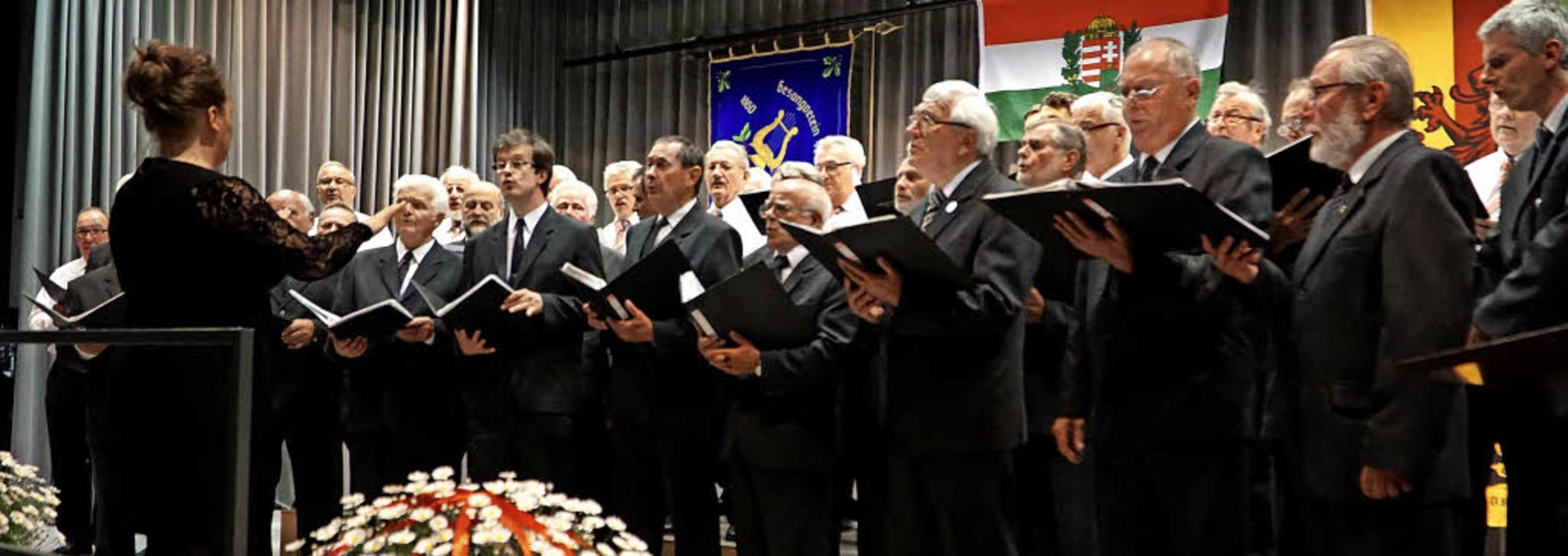 Chorkonzert  Minseln  | Foto: Chris Rütschlin
