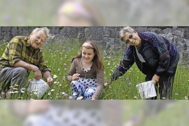 Blumenteppich ist Familienarbeit