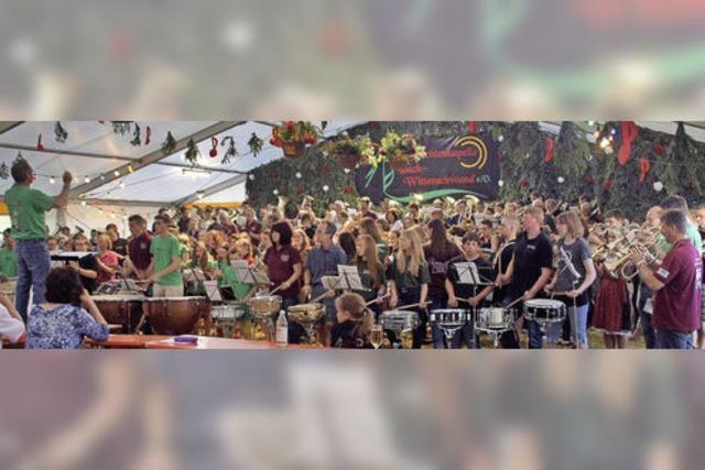 Zum Auftakt spielen 225 Musiker