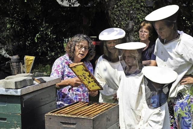 Bienensonntag auf dem Mundenhof fasziniert die Besucher