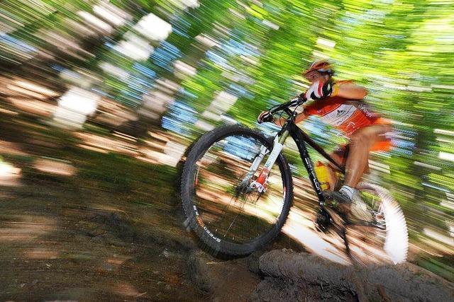 Wanderer entdeckt hinterhältige Falle für Mountainbiker
