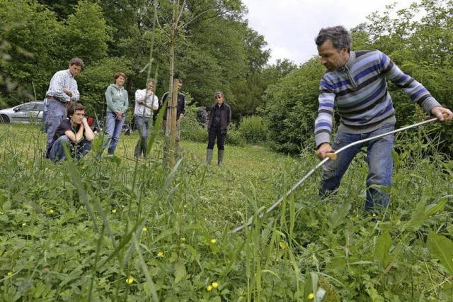 Waldgarten Wiehre: Bio-Sauerkirschen statt Zierpflanzen