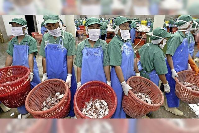 EU macht Druck auf Fischer