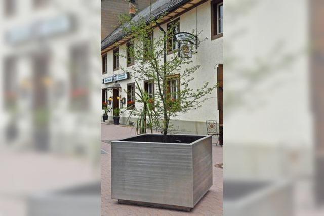 Riesenpflanzentöpfe für die Stadt