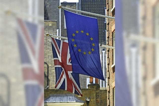 Britisches Unterhaus beschließt EU-Referendum