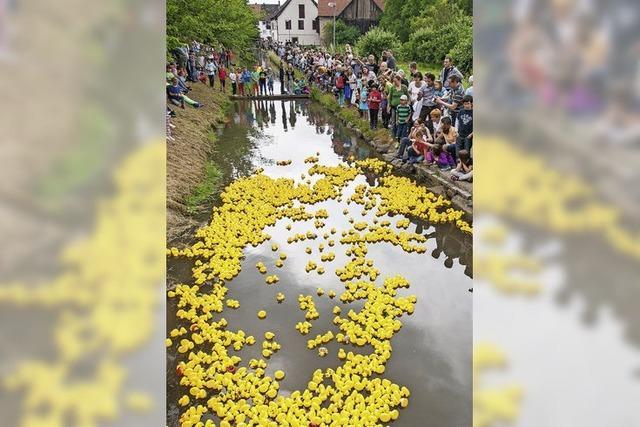 Tausende stürzen sich in den Kanal