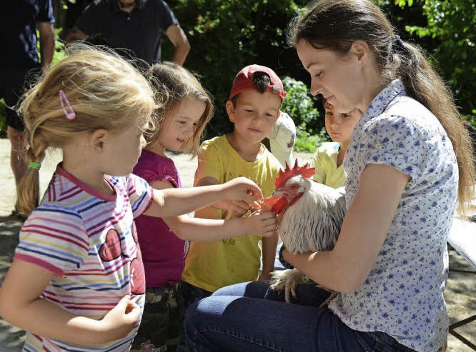 Ein Hahn zum Streicheln und Füttern: A... (5) und Max (8) mit Katharina Mensch.  | Foto: Eggstein