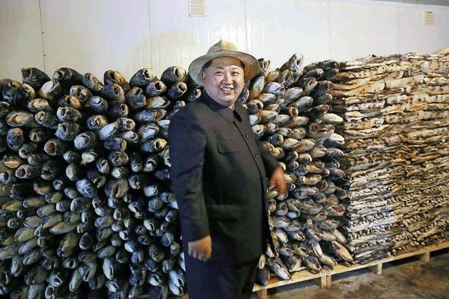 Asienwissenschaftler Rüdiger Frank berichtet von Reisen nach Nordkorea
