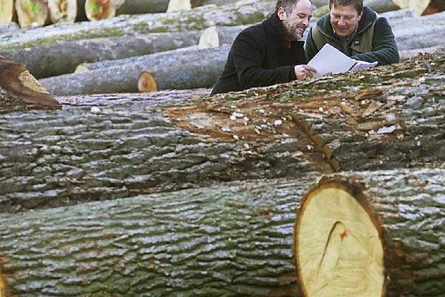 Waldvermarktung: Rechtsstreit scheint unausweichlich