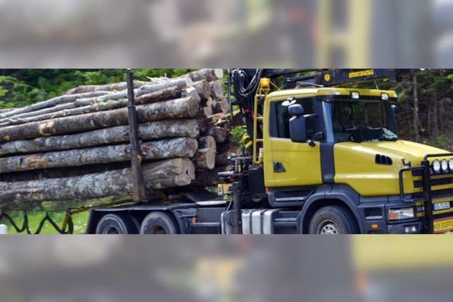 Bewährte Waldarbeiter-Kooperation