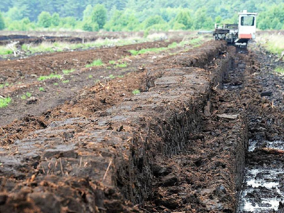 Trotz der negativen Folgen fürs Klima ...utschland Torf unverdrossen abgebaut.   | Foto: dpa/AFP