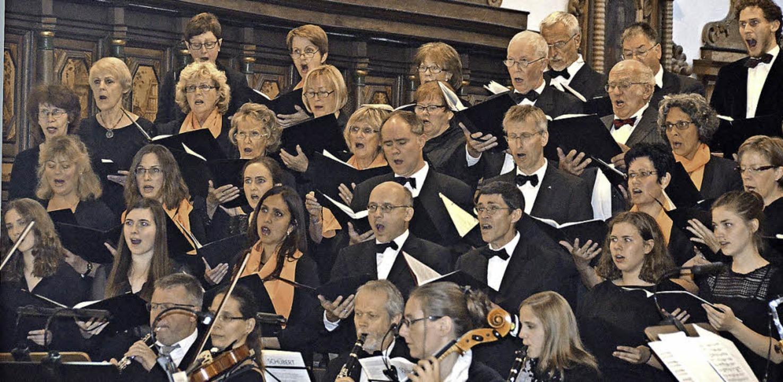 Der Kammerchor im Fridolinsmünster   | Foto: Michael Gottstein