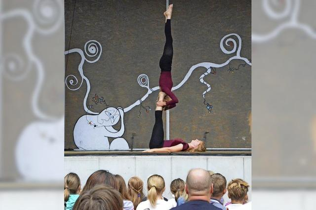 Herrliche Akrobatik in