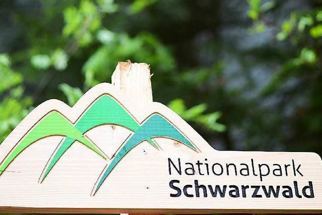 Überraschung: CDU will den Nationalpark vergrößern
