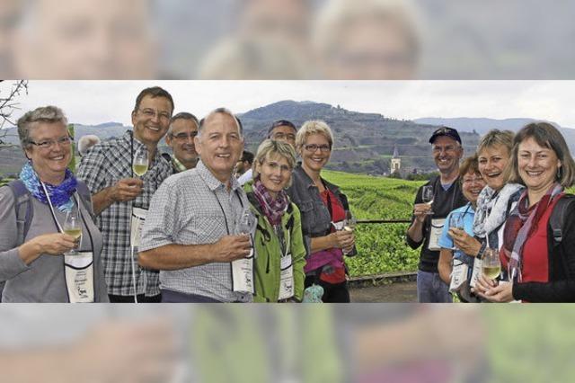 1800 Teilnehmer bei der der 13. kulinarischen Weinwanderung