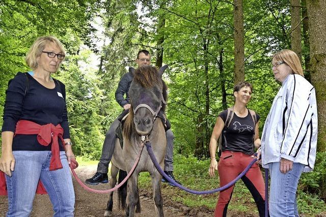 Der Weg zurück zu Pferd und Natur