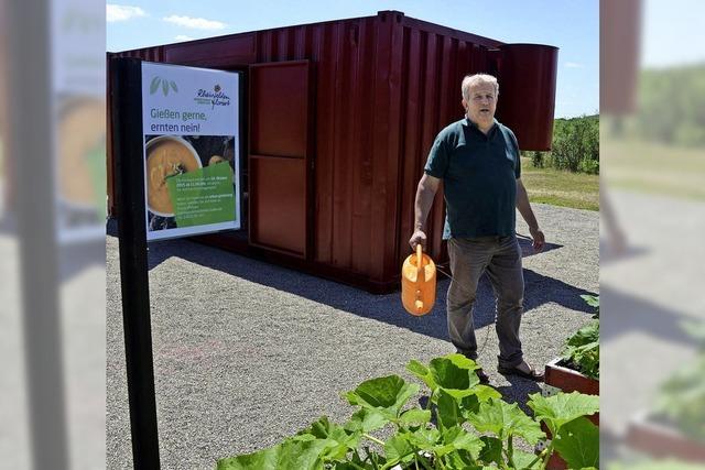 Rote Kiste bietet Freiraum im Grünen
