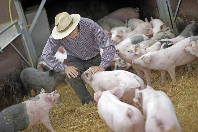Deutschlands Landwirte lehnen schärfere Gesetze ab