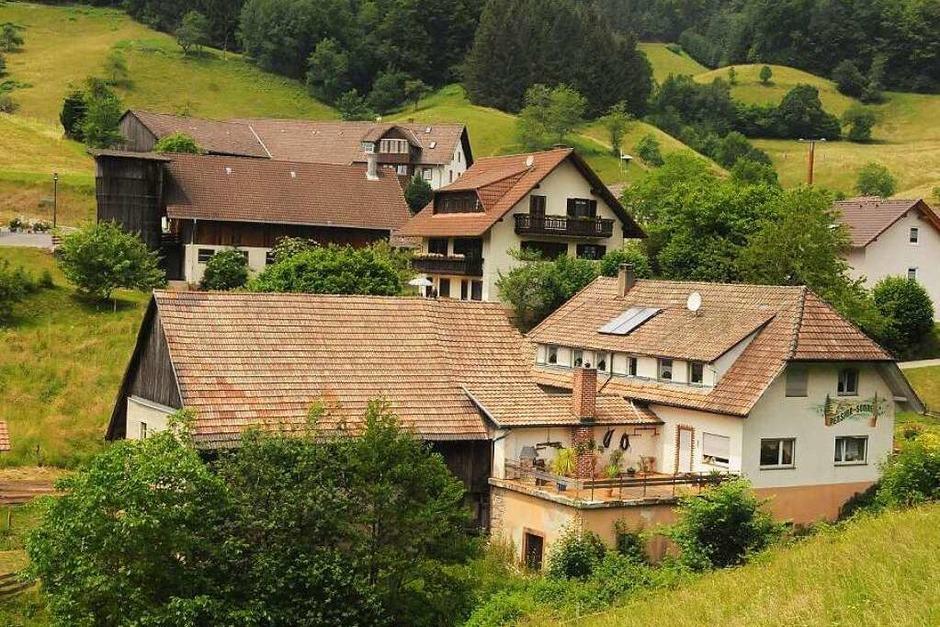 Auf grünen Hügeln gebaut: Endenburg, der am weitesten von Steinen entfernte Teilort ist selbst eine Flächengemeinde. (Foto: Robert  Bergmann)