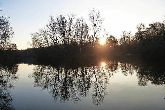 Tauchen im Fohlengartensee wird verboten