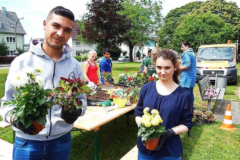 Junge Asylbewerber der Gewerbeschule lernten bei einem bemerkenswerten Ausbildungs-Projekt im Rahmen der Entente florale im Herbert-King-Park den Beruf des Landschaftsgärtners kennen. (Foto: Claudia Gempp)