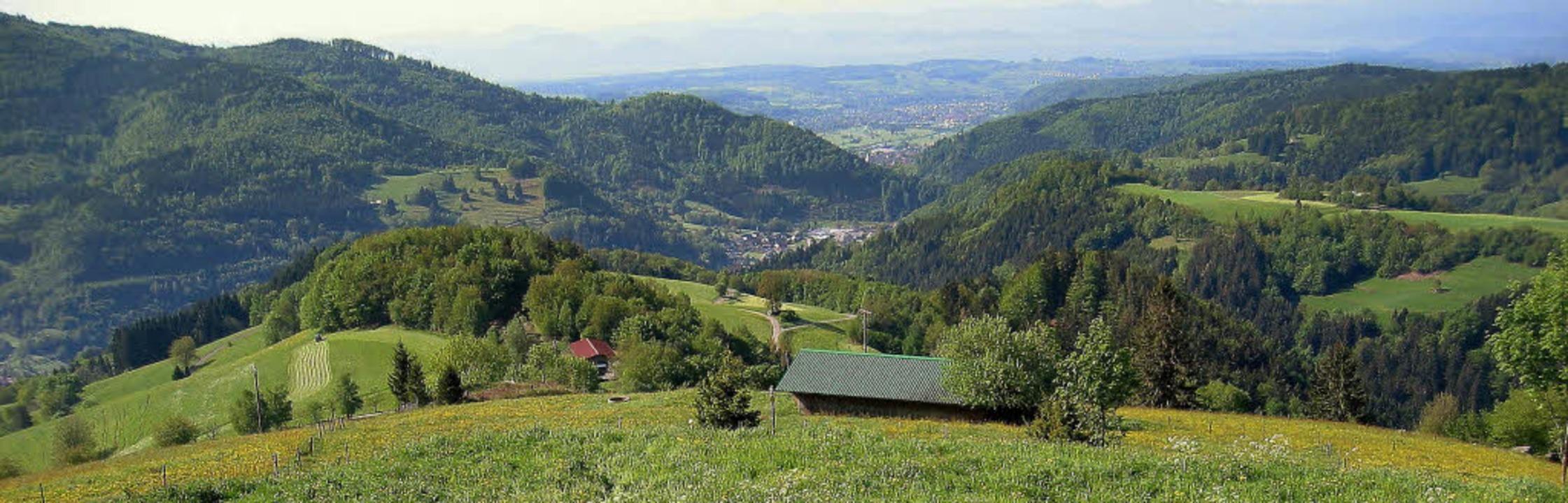 Blick vom mittleren Panoramaweg in Ric...ie zwischen  zwei Glaubensrichtungen.   | Foto: Werner Störk