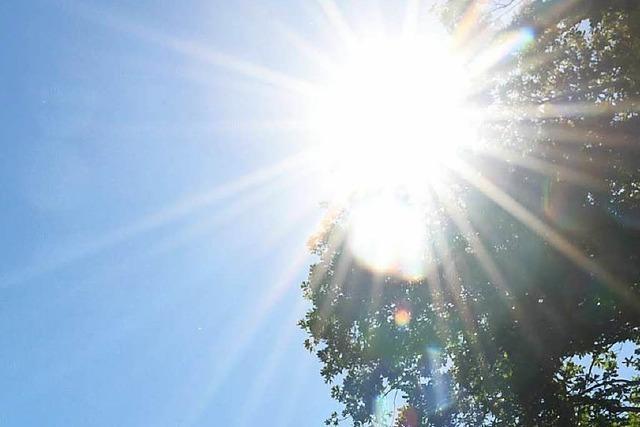 Umweltschutzamt warnt vor erhöhten Ozonwerten in Freiburg
